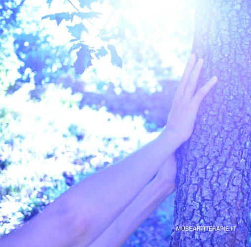 Meditazione con la fotografia nella natura