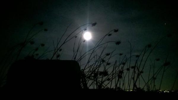 La notte in cui nacquero i desideri. Meditazione fotografica.